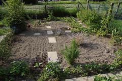 My garden (L) (dididumm) Tags: garden seventhyear spring prepared growing green vegetables strawberries forgetmenot vergissmeinnicht erdbeeren gemüse grün wachsen vorbereitet frühling siebtesjahr garten