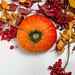 Top view ripe orange pumpkin with viburnum berries and dry leaves