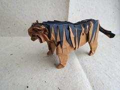 Tiger (Satoshi Kamiya) (maredo77) Tags: origami tiger satoshi kamiya