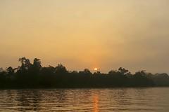 Sunrise on the River Kinabatangan (Bex.Walton) Tags: malaysia asia travel borneo sabah borneoecotours wildlife sukau kinabatangan kinabatanganriver sunrise