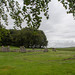Loanhead of Daviot Stone Circle