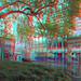 Plataan Lijnbaan Rotterdam 3D GoPro