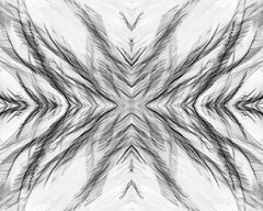 Grass Mirror invert (Macro Lord) Tags: invert bw abstract photoshop mirrored icm