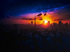 PhoTones Works #11941 (TAKUMA KIMURA) Tags: photones olympus omd em5mark2 takuma kimura 木村琢磨 木村 琢磨 風景 景色 人工 街 町 東京 夕日 夕景 黄昏 東京タワー landscape city town japan tokyo tokyotower twilight dusk sunset 日本