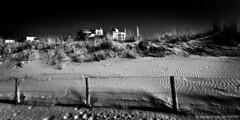 Dunes-BP80701bw-panorama (Rob Blok / BLOK PHOTO) Tags: coast blackwhite nikon dunes fx 1735mm blokphoto robblokfotografie robblokphotography panorama