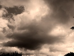Shades of grey. (daveandlyn1) Tags: stormyclouds sepiabw clouds pralx1 p8lite2017 huaweip8 smartphone psdigitalcamera cameraphone
