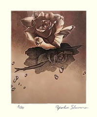 Rose (Japanese Flower and Bird Art) Tags: flower rose rosa rosaceae yoko shono modern intaglio print japan japanese art readercollection