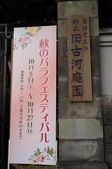 DSC09612 (Zengame) Tags: kyufurukawagardens rx rx1 rx1r sonydscrx1rsonnart235 sonnart235 sony zeiss garden gardens japan tokyo ソニー ツアイス 庭園 日本 旧古河庭園 東京 東京都