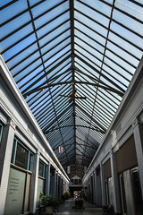 Arcade Skylight (tim.perdue) Tags: newark ohio small town downtown square city urban decay street alley building licking county courthouse nikon d5600 nikkor 18140mm detail sign store storefront shop
