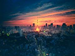 PhoTones Works #11942 (TAKUMA KIMURA) Tags: photones olympus omd em5mark2 takuma kimura 木村琢磨 木村 琢磨 風景 景色 人工 街 町 東京 夕日 夕景 黄昏 東京タワー landscape city town japan tokyo tower twilight dusk sunset 日本