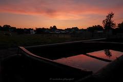 t h e . h o t . t u b (v a n d e r l a a n . fotografeert) Tags: 201908235222 engwegen zuidlimburg vanderlaanfotografeert drinkplaats weide vee