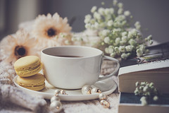 A brand new morning (Chapter2 Studio) Tags: stilllife macaroons coffee lifestyle books flower window white peaceful autumn fall