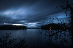 Light (mabuli90) Tags: blue light forest tree finland sky clouds dark night autumn longexposure nature fall landscape