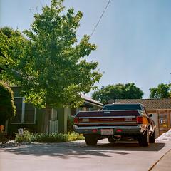 Willow Glen, California (bior) Tags: willowglen hasselblad500cm ektar25 kodakektar ektar expiredfilm 120 mediumformat 6x6cm sanjose california suburb yard house home car chevrolet driveway