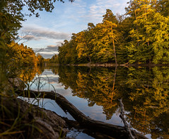 Autumn by the lake (cygossphotography) Tags: stuttgart badenwürttemberg deutschland germany allemagne landschaft landscape paysage natur nature herst autumn fall automne wald forest forêt spiegelung reflection reflet see lake lac goldenestunde goldenhour heuredoréee canon eos 6d