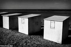 0756 - Hardelot, 1978 (ikaune) Tags: nb bw noiretblanc blackandwhite ikaune argentic argentique monochrome hardelot cabines