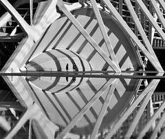 Light an Shadows (gerard eder) Tags: world travel reise viajes europa europe españa spain spanien valencia calatrava cac city ciudades cityscape cityview ciudaddelasartesyciencias cityofartsandsciences stadtlandschaft städte streetlife street streetart stadtderkünsteundwissenschaften cataluña santiagocalatrava architecture arquitectura architektur abstractarchitecture modernarchitecture blackandwhite blackwhite blancoynegro whiteblack whiteandblack reflections spiegelung wasser water museum museo urban urbanlife urbanview