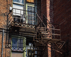 Fire Escape (tim.perdue) Tags: newark ohio small town downtown square city urban decay street alley building licking county courthouse nikon d5600 nikkor 18140mm detail sign store storefront shop