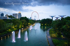 Gardens by the Bay (Andrea Rapisarda) Tags: gardensbythebay singapore travels garden fountains ©allrightsreserved sony 16mm a6000 sera bluehour