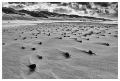 Steine am Strand / Stones on the beach (Dirk Böhling) Tags: monochrome monochrom blackandwhite beach nature natur landscape sky sea strand clouds lfi lfigallery