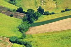 fondovalle (luporosso) Tags: natura nature naturaleza naturalmente nikon nikond500 nikonitalia scorcio scorci country countryside campagna campi alberi trees marche italia italy