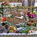 Harvest festival / Erntedank