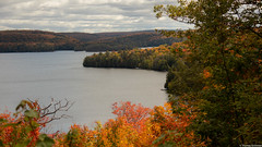 Canoe Lake, Algonquin Provincial Park, Canada (tomst.photography) Tags: indiansummer canada nature wood autumn fall color colors forest lake see lago kanada algonquinpark algonquinprovincialpark nationalpark canoelake herbst tomst