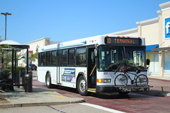 SRTA 2008 Gillig Advantage 35' #804 on Route NB10 (MTA3306) Tags: