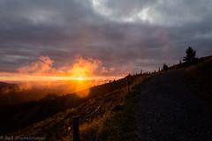 20190923-DSC_6790 (rolfsteinebrunner) Tags: sonne sonnenuntergang nikon d7200 wolken nebel schwarzwald belchen oberrheintal vogesen rhein