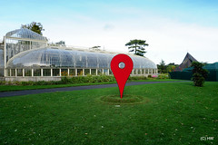 "53°22'21.5""N 6°16'14.2""W (Harry_Warren) Tags: botanic gardens glasnevin dublin ireland tree trees nature woods wood pin googlepin sculpture art"