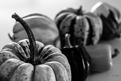 Squash (Perry J. Resnick) Tags: pjresnick perryjresnick pjresnickgmailcom pjresnickphotographygmailcom ©2019pjresnick ©pjresnick light fuji fujifilm highspeediso atmospheric digital shadow texture shadows angle perspective white resnick indoor bw blackandwhite blackwhite monochrome monochromatic kitchen reflection 35mmf14 xf35mm fujinon35mmf14 xpro2 acros squash vegetable