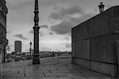 Au haut des marches. Paris, oct 2019 (Bernard Pichon) Tags: paris france fr75 bpi760 marche nb hdr pont saintlouis