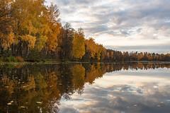 Autumn Lake (gubanov77) Tags: trees lake sky autumn october vvedenskoelake vvedensky vladimiroblast russia reflection nature forest water landscape