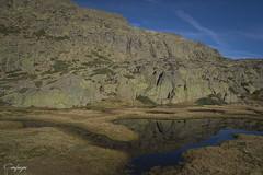 Reflejos...274/365 (cienfuegos84) Tags: peñalara montaña mountain reflejos laguna