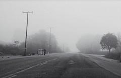 * (PattyK.) Tags: ioannina giannena giannina ιωάννινα γιάννενα ελλάδα greece grecia griechenland epirus ipiros balkans hellas ellada europe βαλκάνια ήπειροσ ηπόλημου mycity whereilive october 2019 οκτώβριοσ πέραμα ομίχλη δρόμοσ street perama fog