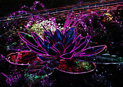 The Fountain of Light (kfocean01) Tags: neon colors water art photomanipulation manipulation light flower flowers nature