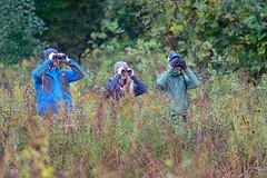 BigSit2019-43229.jpg (Mully410 * Images) Tags: bird birdwatching bigsit birding birder coldwaterspring mississippinationalriverrecreationarea birds people raining