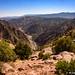 Grand Canyon of the Arkansas