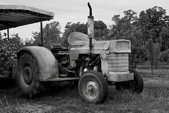 Massey Ferguson 165 Tractor (Bytormsa) Tags: tractor nikon nikkor tmax f4 bw