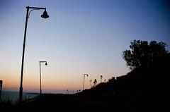 Ombre prima della luce (michele.palombi) Tags: negativocolore c41 kodakektar100 film35mm analogicshot sea mediterraneo sunrise ombre