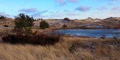 2018.12.30 -LUDINGTON STATE PARK DUNE POND (o IIIIIII o, Jerry Herrendeen) Tags: herrendeen park dune ludington michigan water beach grass nature natural sun shadow juniper hiking pond sand