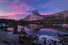 Pink Cathedral (Maddog Murph) Tags: yosemite national park reflections cathedral lake reflection granite trees water upper snow thaw spring melt sunset pink blue photography fine art serene peaceful calm