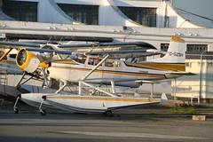 C-GZSH Conair C185 (Vernon Harvey) Tags: cgzsh cessna 185 skywagon conair vancouver yvr