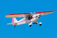 N88698 Piper J3C-65 Cub (SamCom) Tags: f23 ranger rangermunicipal rangerairport n88698 piper j3c65 cub j3