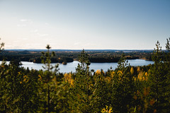 Fångsjön Lookout (thedrowsy) Tags: nature landscape a7riii sony alpha sweden sverige norrland jämtland fall autumn tree trees forest wood woods lake water l