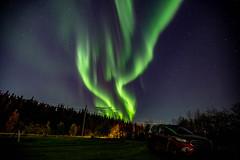 Oct 3, 2019 Aurora-7387 (nwtarcticrose) Tags: auroraborealis nightsky northwestterritories northernlights yellowknife lake landscape nightphotography aurora valpond