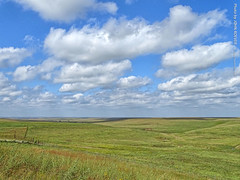 Flint Hills in the Afternoon, 29 Sept 2019 (photography.by.ROEVER) Tags: kansas vacation roadtrip trip 2019 september september2019 fall autumn fall2019 autumn2019 minivacation wichitatrip weekendtrip weekend chasecounty flinthills prairie tallgrassprairie landscape rural country countryside outside afternoon bazaarcrossing bazaarcattlecrossing scenicoverlook i35 interstate35 kansasturnpike kta turnpike clouds partlycloudy blueskies bluesky hills hill gentlyrollinghills usa