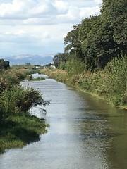 Canale di Bonifica