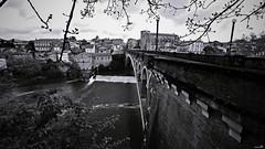 Un jour à Gaillac (Un jour en France) Tags: canoneos6dmarkii canonef1635mmf28liiusm noiretblanc noiretblancfrance black pont gaillac village ville monochrome rivière nature