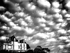 With a view (G.Billon) Tags: sky nuages clouds armor seaside breizhmabro bzh bretagne breizh îleetvilaine dinard noiretblanc bw blackandwhite iphoneography cameraphone gbillon 35 groupenuagesetciel